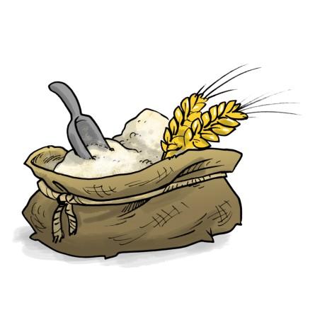 Graines de blé 1kg
