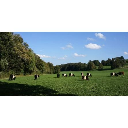Pommes de terre Vitabella 3kg